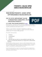 Macronutrienti Calea Spre Optimizarea Rezultatelor