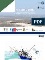 TEMAS EMERGENTES