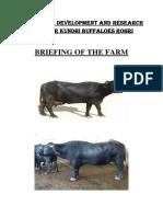 Briefing of KBF Rohri
