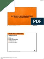 11sistema de Gas Combustible