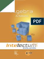 Álgebra 3 Act. - Intelectum.pdf
