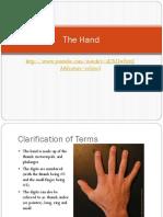 TheHandbig.pdf