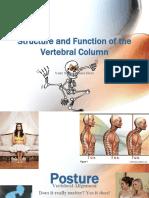 StructurefunctionoftheVetebralColumnbjb.pdf