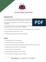 Programa Taller Auriculoterapia
