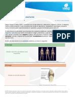 Divisionesdelaanatoma.pdf