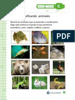 Clasificando Animales