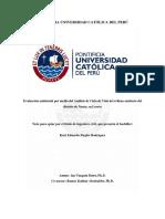 Ziegler Rodriguez Kurt Evaluacion Ambiental Medio Analisis