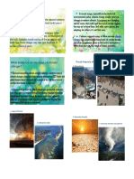 Ecology Report