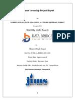 Manan report.pdf