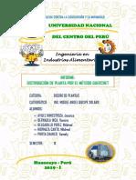 Informe - Diseño de Plantas - Mantaro