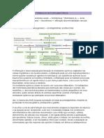 Fármacos Anti-Inflamatórios (1)