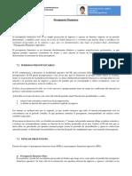 290932388-PRESUPUESTO-FINANCIERO.docx