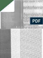 Pensamento Feminista Brasileiro