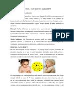 Historia Natural Del Sarampión