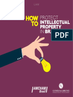 Howto Protect Intellectal Property in Brazil