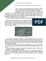 CuidadoArbolesVidesMatorrales (1)