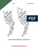 encuentra-las-diferencias-y-colorea-para-los-mas-pequenos-7.pdf