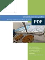 Biossegurança Em Laboratórios de Microbiologia de Alimentos.valença, 1ª Ediçao, 2017, 12p