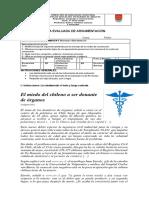 guía evaluada donación de órganos 4° Lenguaje