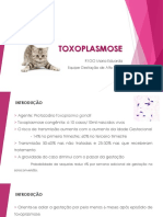 TOXOPLASMOSE - GHC (RS)