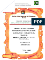 informe practicas preprofesionales.docx