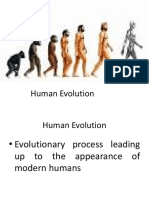Human Evolution ppt 3.pptx