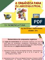 IVNOMENCLATURA (2)