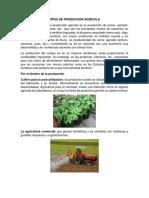 Tipos de Producción Agrícola