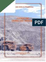 Curso de Derecho Minero CARMEN ANSALDI (2) Convertido