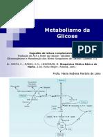 metabolismo glicose