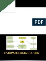 6- SDR