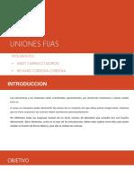 Uniones fijas