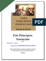 Tres_Principios.doc
