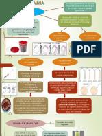 Practica 3 de Laboratorio de Microbiologia