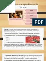 Caracteristicas Organolepticas Del Vacuno 1