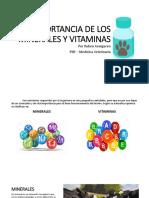 IMPORTANCIA DE LOS MINERALES Y VITAMINAS.pptx