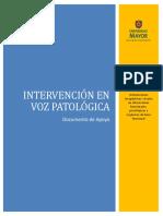 Documento de Apoyo IVP 2013