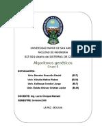 Informe de Algoritmos Geneticos