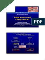 Regeneration and Fibrous Repair kuliah