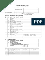 Credit Audit Format