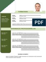 3-modele-cv-efficace-vert.docx