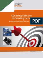 Dorninger Hytronics Unternehmenbeschreibung