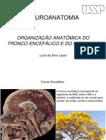 Tronco encefálico e cerebelo.pdf