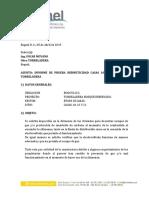 Informe Tecnico Prueba Gas casas 10 13 21.pdf