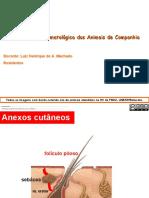 01_Semio_dermatol�gica_2019 (1).pdf