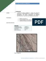 evaluacion ambiental