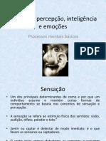 Aula 14- Sensação, Percepção, Emoções e Inteligência
