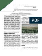 1 7 Niveles Adecuados Para Crisantemo_0