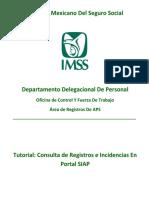 Tutorial Consulta Registros e Incidencias en SIAP Portal