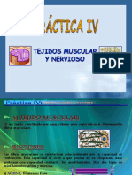 Docsity Power Point Clase Practicas Linfoide